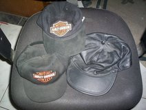 Harley Davidson Baseball Caps in Kingwood, Texas