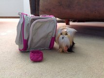 American Girl Doll Dog and Pet Carrier in Temecula, California