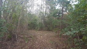 2 1/2 Acres in Huffman, TX in The Woodlands, Texas