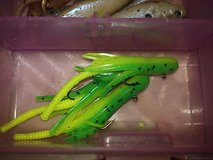 Pan Fish trout over. 60 pc special box inc. in 29 Palms, California