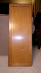 Cabinet Door in Bolingbrook, Illinois