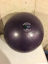 go fit core stability ball workout kit in Naperville, Illinois