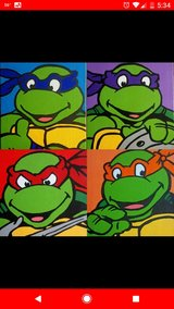 TMNT Paintings in Vista, California