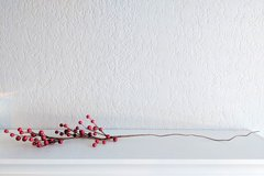 Wire Holly Berry Branches in Travis AFB, California