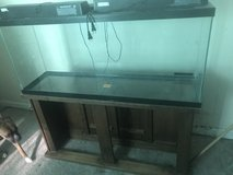 fish tank and base in Manhattan, Kansas