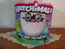 Hatchimal (says Pengualas or Draggles on the side of box) in Kankakee, Illinois