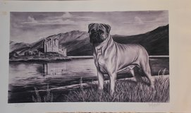 Vintage Bullmastiff Print in Sandwich, Illinois