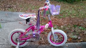 Princess bike in Warner Robins, Georgia