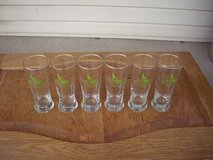 set of 6 Idaho Ducks Unlimited Glasses in Mountain Home, Idaho