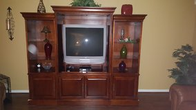 Entertainment Cabinet in Kingwood, Texas