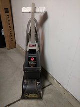 Steam vaccum cleaner in Glendale Heights, Illinois
