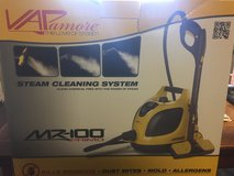 Steam Cleaning Machine in Hopkinsville, Kentucky