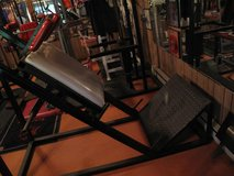 Hack Squat Leg Press Combination Machine in Naperville, Illinois