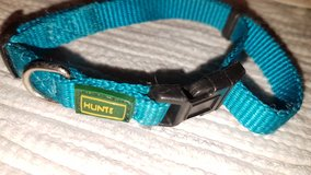 Hunter collar turquoise, sm in Ramstein, Germany
