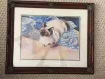 Siamese Cat matted and framed print in Spring, Texas