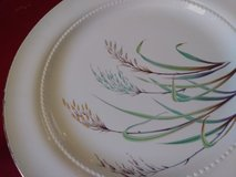 Gold Rimmed Plate Set in Alamogordo, New Mexico