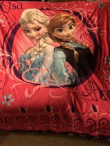 Disney's Frozen Elsa & Anna in Palatine, Illinois