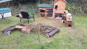 Hughe guinea/bunny set up/SUPPLIES ETC, COMPLETE! in Ramstein, Germany