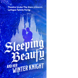 """(2/4) """"SLEEPING BEAUTY"""" TUTS 6th Row Seats - Wed, Dec. 13 - 7:30pm - CALL NOW! in Spring, Texas"""