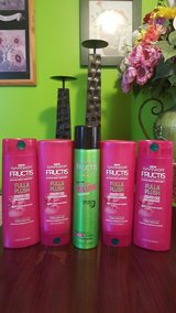 Garnier Fructic Shampoo, Conditioner, & Hair Spray Bundle in Fort Lewis, Washington