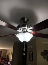 Ceiling Fan in Naperville, Illinois