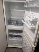 Fridge and freezer in Ramstein, Germany