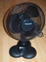 Fan Black in Wiesbaden, GE