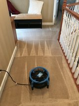 Carpet Cleaning !!! 3 Rooms for $99 or  2 Rooms for $79 in Clarksville, Tennessee