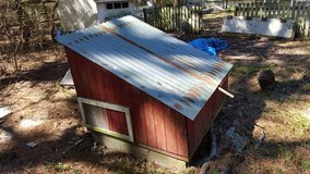 Chicken Coop in Beaufort, South Carolina