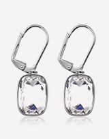 Stone Drop Crystal Earrings in Barstow, California