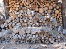 #151   Firewood (Cord++) in Ruidoso, New Mexico