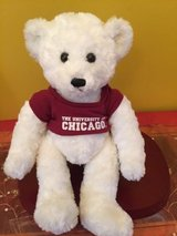 LIKE NEW stuffed animals / teddy bears $5 only in Naperville, Illinois
