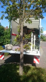 LOCAL MOVERS AND TRANSPORT, PICK UP AND DELIVERY in Wiesbaden, GE