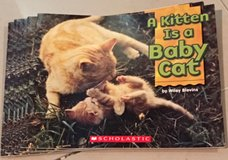 6 Scholastic Guided Reading Books A Kitten is a Baby Cat in Okinawa, Japan