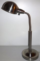 Stainless Goose Neck Desk Lamp in New Lenox, Illinois