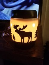 Scentsy moose warmer in Colorado Springs, Colorado