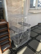 Large cat cage in Tampa, Florida