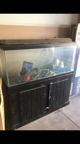 55gal fish tank in Hemet, California