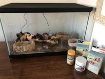 Hermit Crabs and home in Naperville, Illinois