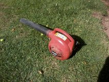 Leaf Air Blower (works) in Alamogordo, New Mexico