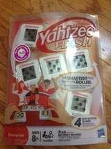 Yahtzee Flash in Naperville, Illinois
