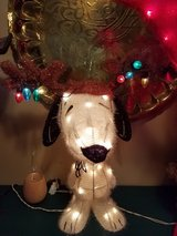 Lighted holiday Christmas Snoopy indoor outdoor in Plainfield, Illinois