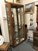 Curio Cabinet with lights in Oswego, Illinois