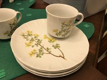 Toscany China set in Kingwood, Texas