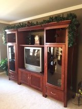 Entertainment Center in Palatine, Illinois