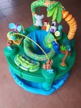 Evenflo Exersaucer Triple Fun Active Learning Center, Life in the Amazon in Stuttgart, GE