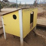 Hen house in Yucca Valley, California