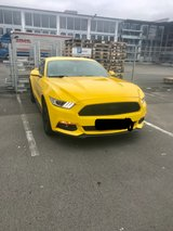 Ford Mustang EcoBoost Less Than 6000 Miles in Ramstein, Germany