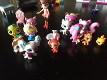 Littlest Pet Shop in Ramstein, Germany