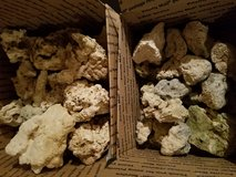 Dry coral for fish tanks in Plainfield, Illinois